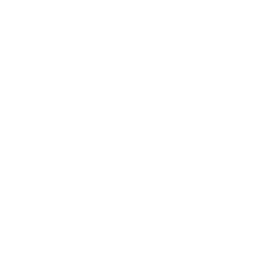 Logo passregion white